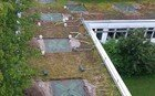 Photo showing a bird's-eye view of a green roof where ABS-Lock OnTop anchors have been set up